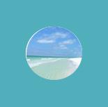 beach house rentals destin